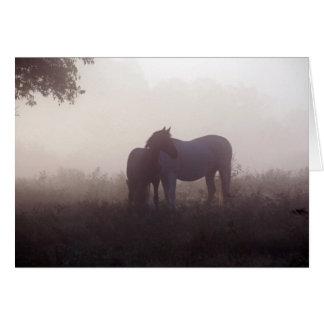 Morning Mist greeting card blank inside