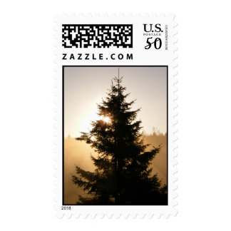 Morning mist postage