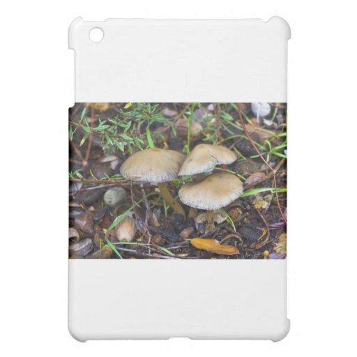 Morning Mushrooms iPad Mini Case
