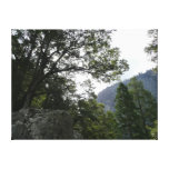 Morning on the Trail to Vernal Falls in Yosemite Canvas Print