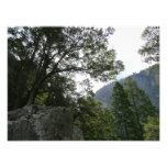 Morning on the Trail to Vernal Falls in Yosemite Photo Print