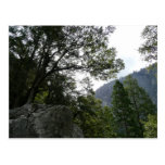 Morning on the Trail to Vernal Falls in Yosemite Postcard