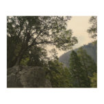 Morning on the Trail to Vernal Falls in Yosemite Wood Print