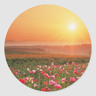 Morning Poppies Classic Round Sticker
