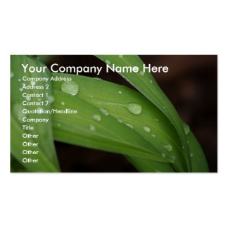 Morning Rain on Blades of Grass Business Cards