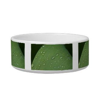 Morning Rain Pet Bowls