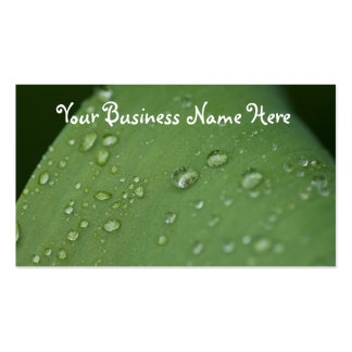Morning Rain; Promotional Double-Sided Standard Business Cards (Pack Of 100)