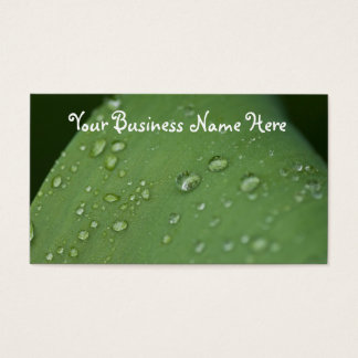 Morning Rain; Promotional Business Card
