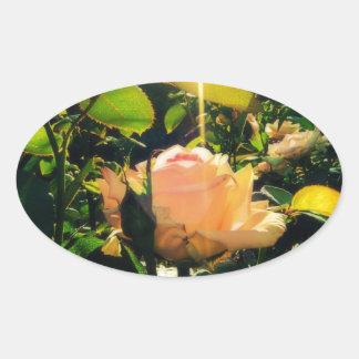 Morning Rose Oval Sticker