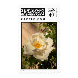 Morning Rose Postage