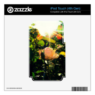 Morning Rose Skin For iPod Touch 4G