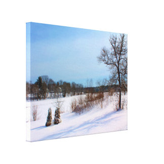 Morning Shadows In A Snowy Field Canvas Print