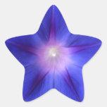 """Morning Star"" Blue Morning Glory Star Star Sticker"