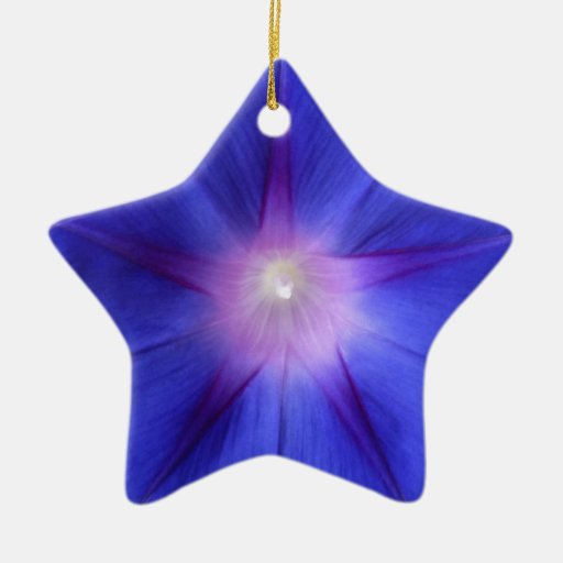 """Morning Star"" Morning Glory Flower Double-Sided Star Ceramic Christmas Ornament"
