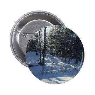 Morning Sun on Winter trees Pinback Button