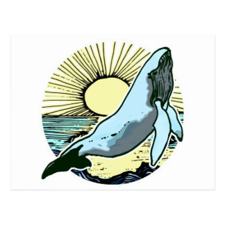Morning sun whale 2 postcard