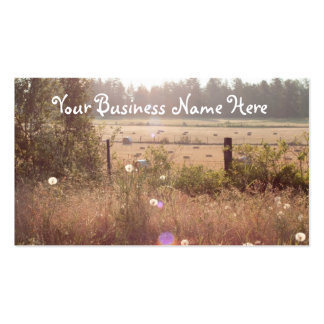 Morning Sunlight Double-Sided Standard Business Cards (Pack Of 100)