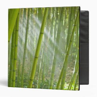 Morning sunlight filtering through bamboo vinyl binder