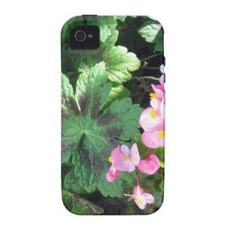 Morning Sunlight in the Shade Garden iPhone 4/4S Case