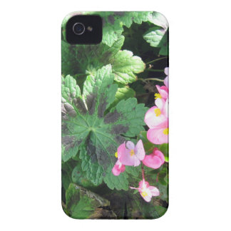 Morning Sunlight in the Shade Garden Case-Mate iPhone 4 Cases