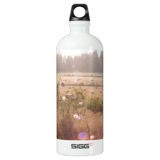 Morning Sunlight; No Text Aluminum Water Bottle