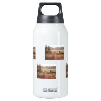 Morning Sunlight; No Text Insulated Water Bottle