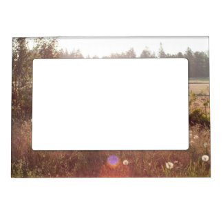 Morning Sunlight; No Text Magnetic Frame