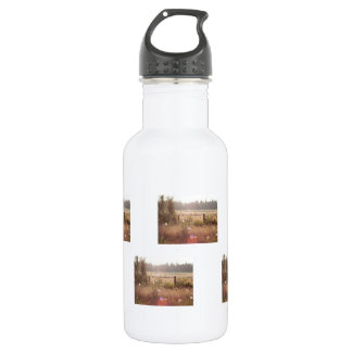 Morning Sunlight; No Text Stainless Steel Water Bottle