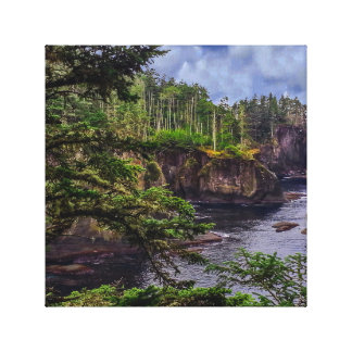 morning sunrise olympic peninsula Cape Flattery Canvas Print