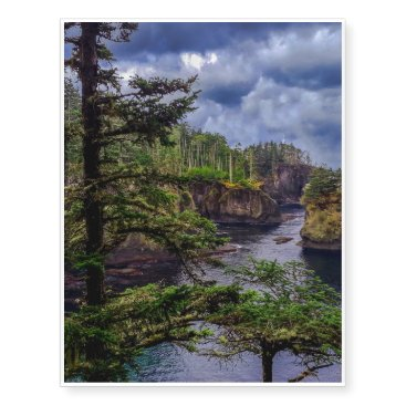 Beach Themed morning sunrise Olympic peninsula Cape Flattery Temporary Tattoos