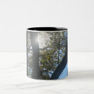 Morning Sunshine Two-Tone Coffee Mug