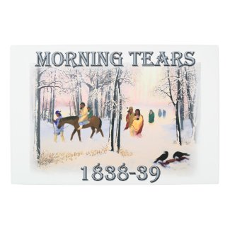 Morning Tears depicts the Cherokee Trail of1838-39 Metal Print