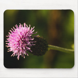 Morning Thistle Mouse Pad
