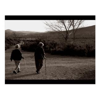 """Morning Walk, Carson City"" Postcard"