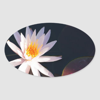 Morning Water Lily Oval Sticker
