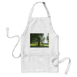 Morning Willow - Start the Day off Bright Adult Apron