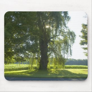 Morning Willow - Start the Day off Bright mousepad