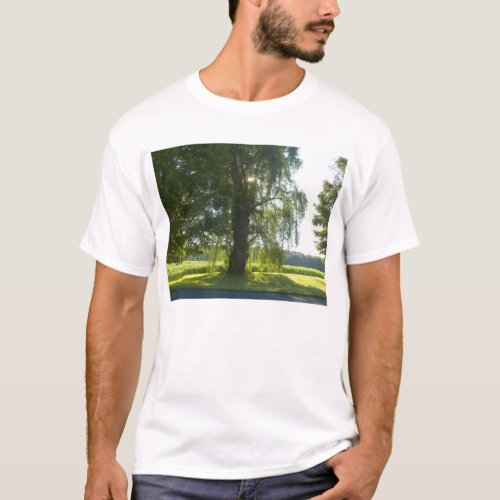Morning Willow - Start the Day off Bright T-Shirt
