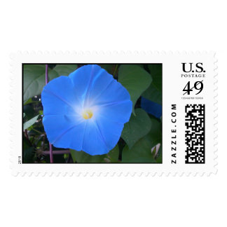 MorningGlory-Original Timbre Postal