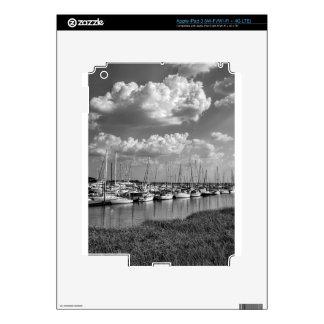 Morningstar Marina and Grasslands Black and White iPad 3 Skins