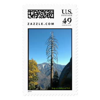 Moro Rock Trail Sequoia National Park Postage Stamps