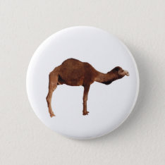 Moroccan Camel Button Pin Badge at Zazzle