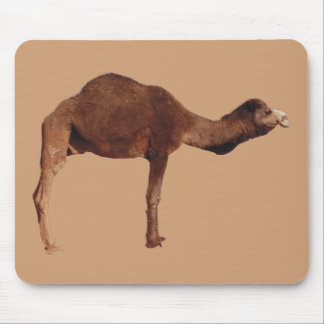 Moroccan Camel Mouse Pad
