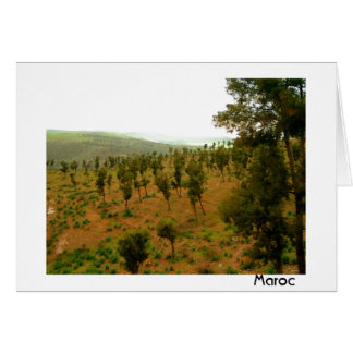 Moroccan Valley with Trees Card