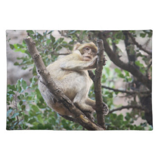 Morocco-Barbary Macaque Cloth Place Mat