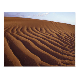 Morocco, Tinfou near Zagora), Sand dunes, Postcard