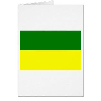 Morona-Santiago flag Greeting Card