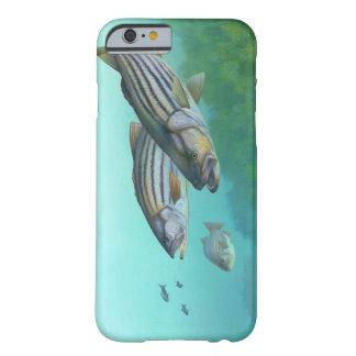 Morone atlántico Saxatilis de los pescados de la Funda Para iPhone 6 Barely There