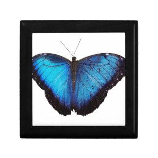 Morpho azul Butterflie Cajas De Recuerdo