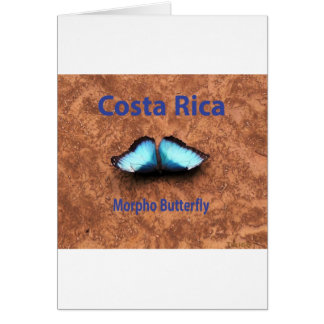 Morpho butterfly Costa Rica Card